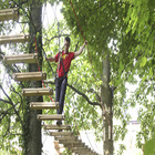 Forest Jump High Ropes.jpg