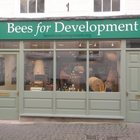 Bees for development Front Of Shop Rz
